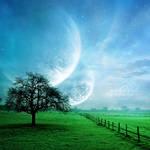 +Morning Dream+