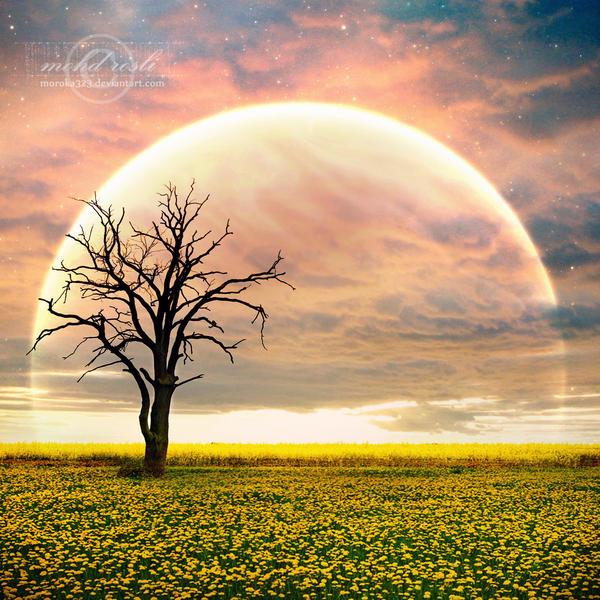 +Rise of Dream+ by moroka323