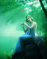 .:Melody for you:. by moroka323