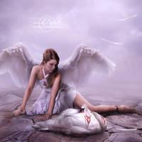 .:Stolen Wings:. by moroka323