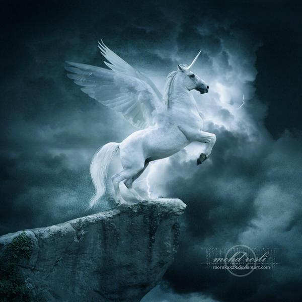 .:Unicorn:. by moroka323 on DeviantArt