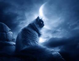 .:Missing The Moon II:. by moroka323