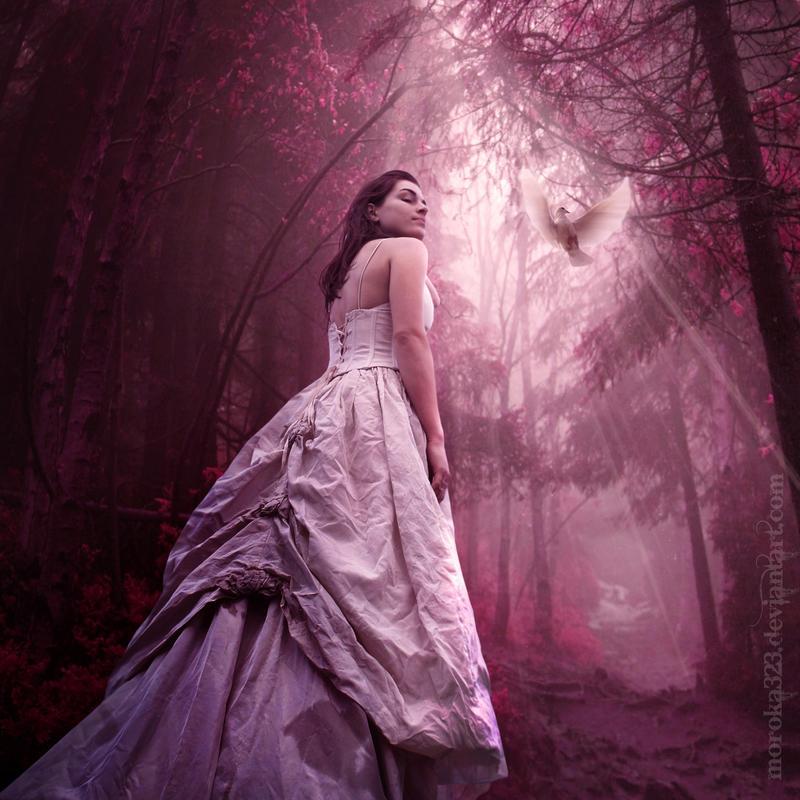 .:There is light II:. by moroka323