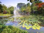 Lampang River Lodge Hotel-Thailand