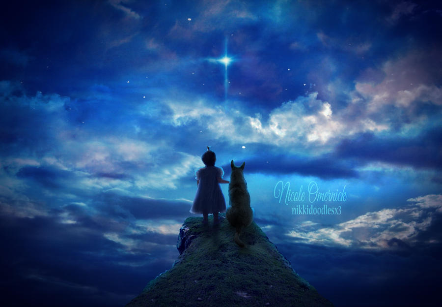 wish upon a star Take part in our wish upon a star campaign this year to help us support bereaved children at christmas, whether at school, at home or in the workplace.