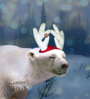 Harry the Red-Nosed Polar Bear
