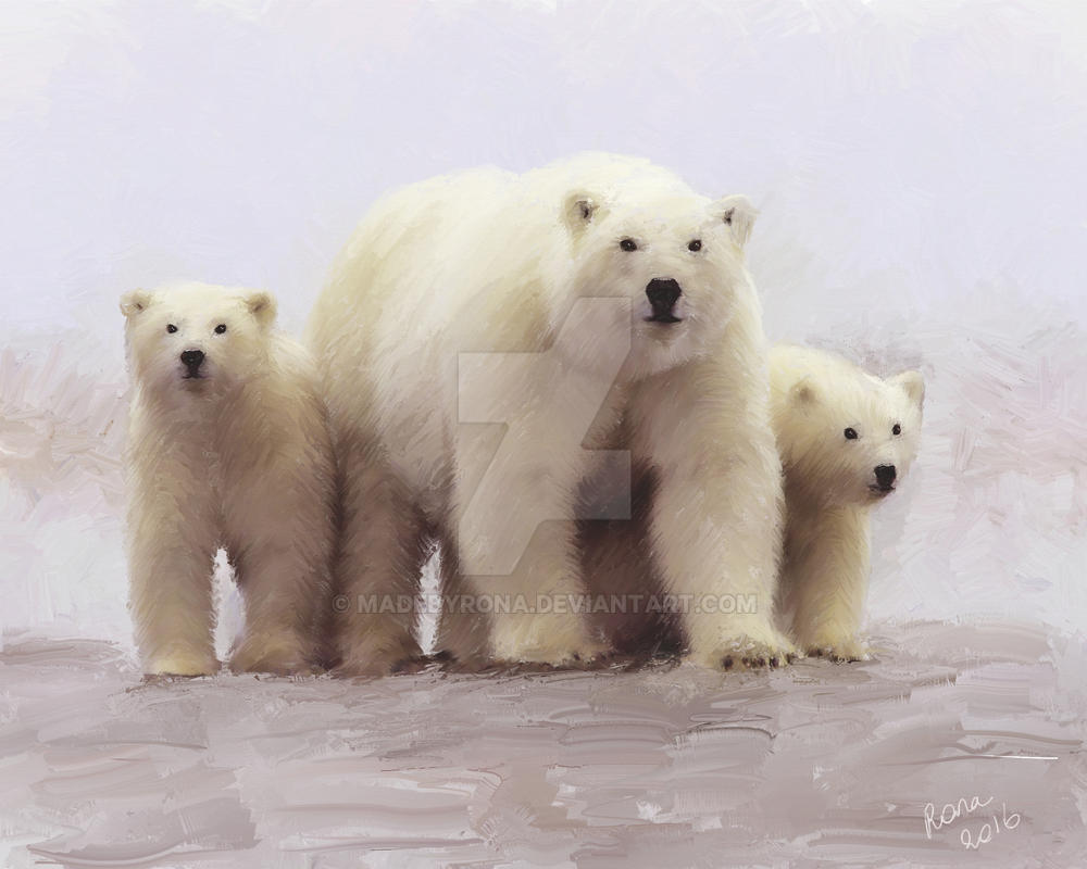 D Nnschiefer ijsbeer
