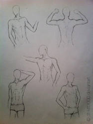 anatomy_study_man by DT-Kitt3000