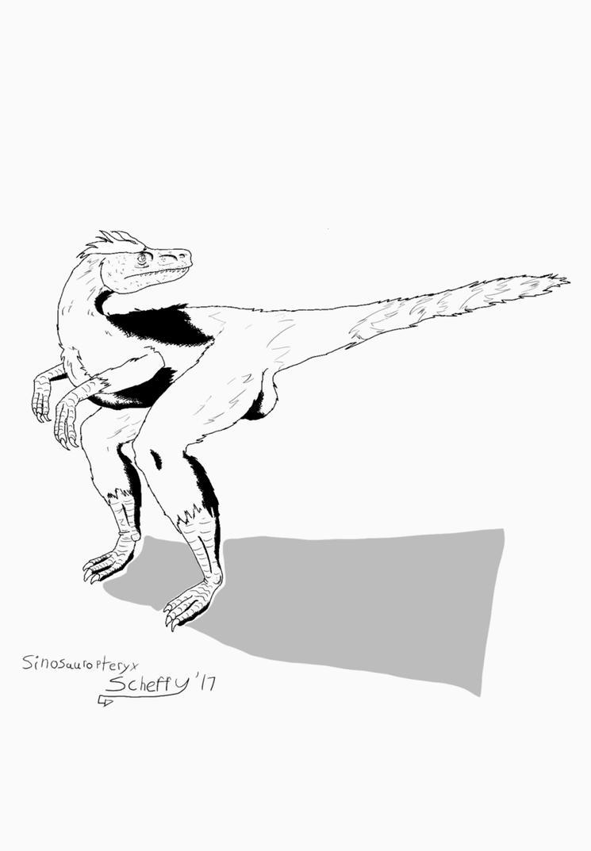 sinosaurapteryx by Scheffy11