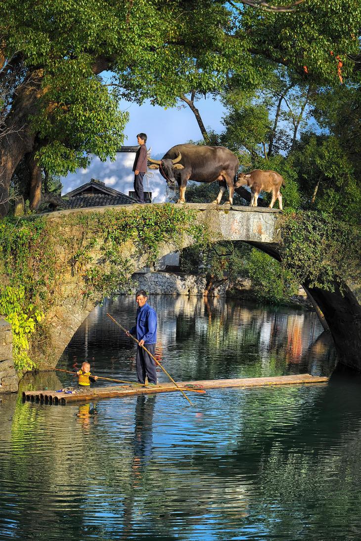 Simple Natural Life or Modern City Life ? by SAMLIM