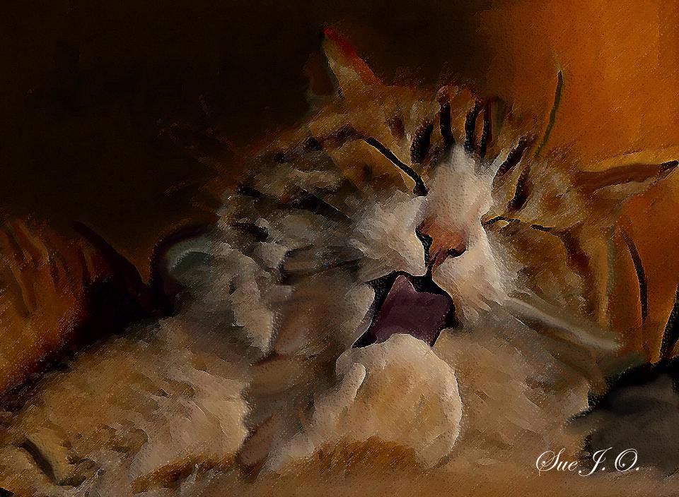 Chillin'-Chelsey by SueJO