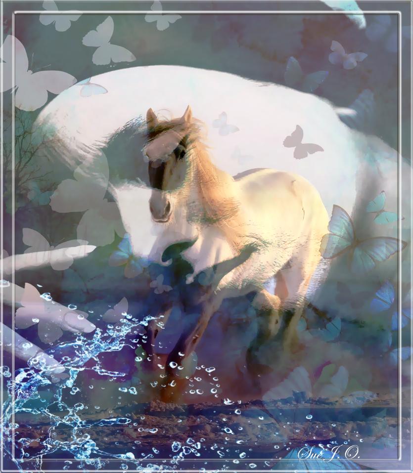 Butterfly-Dreams- by SueJO