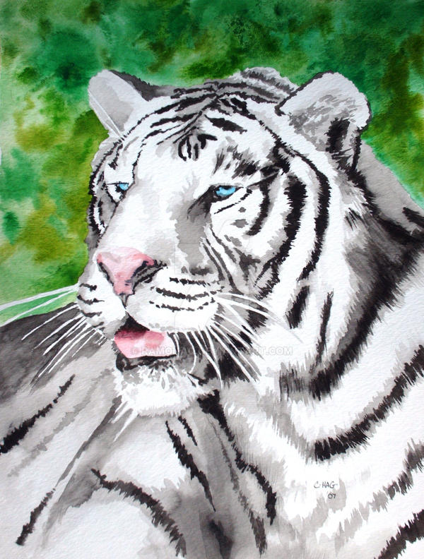 Commentary: Moon Tiger, 1987, by Penelope Lively