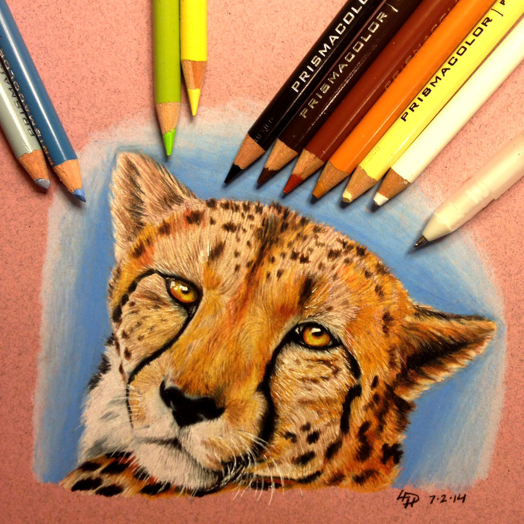 Cheetah by BlvqWulph