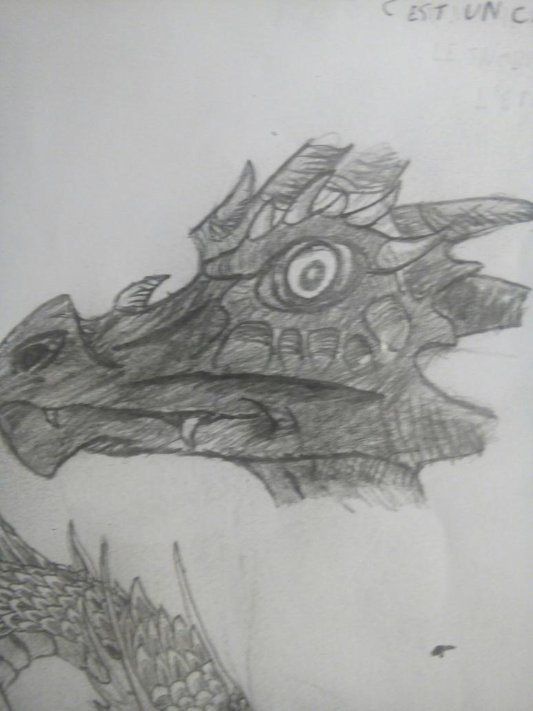 Dragon head by Askilone