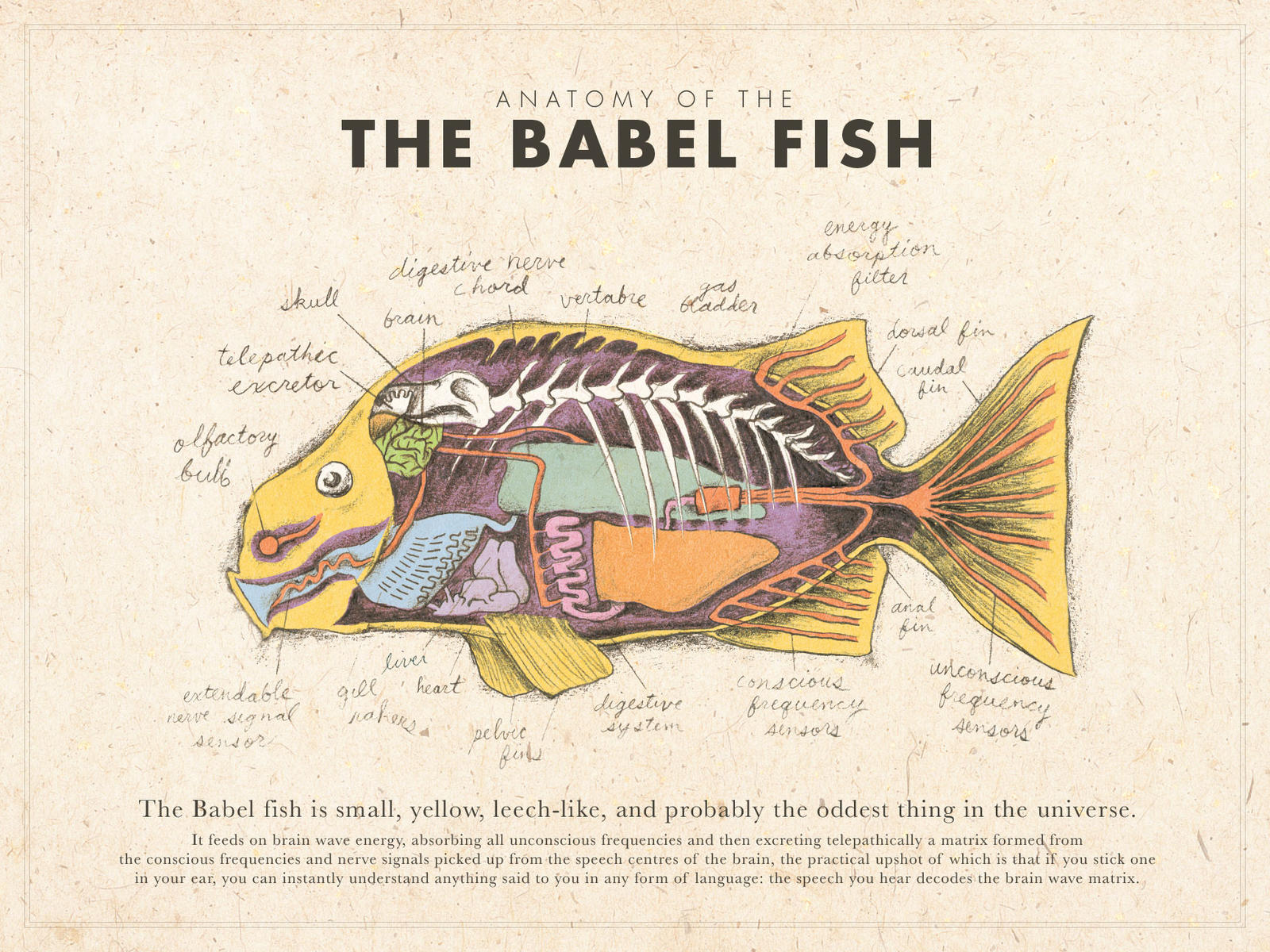 babel fish poster color by mrrtist21 on deviantart