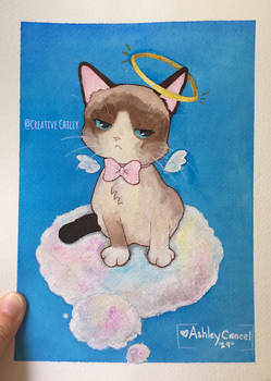 Hmm, this is the heaven? I hate it! -Grumpy Cat