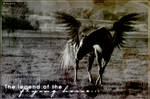 Legend of the flying horse..