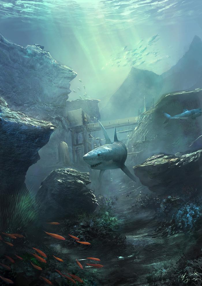 Requin Dans des Eaux peu Profondes dans Divers 94fe1e95f77e40f7ac852f4720653f36