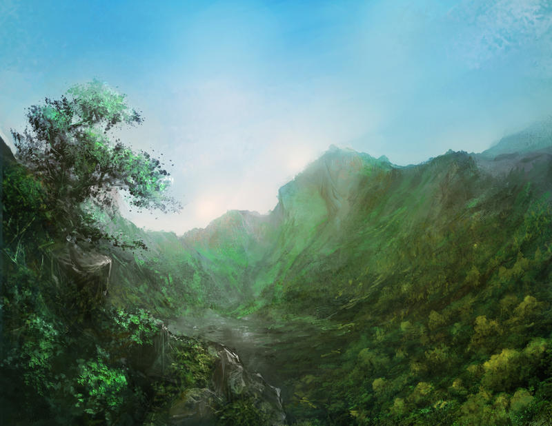 Forest by frankhong