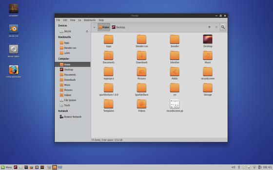 Linux Mint Nadia Custom Desktop