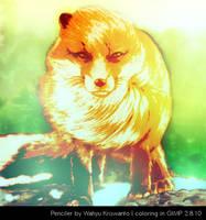Golden Fox