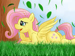 the melancholy of fluttershy