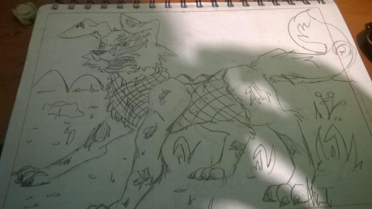 perro con chaleco by shinkuma