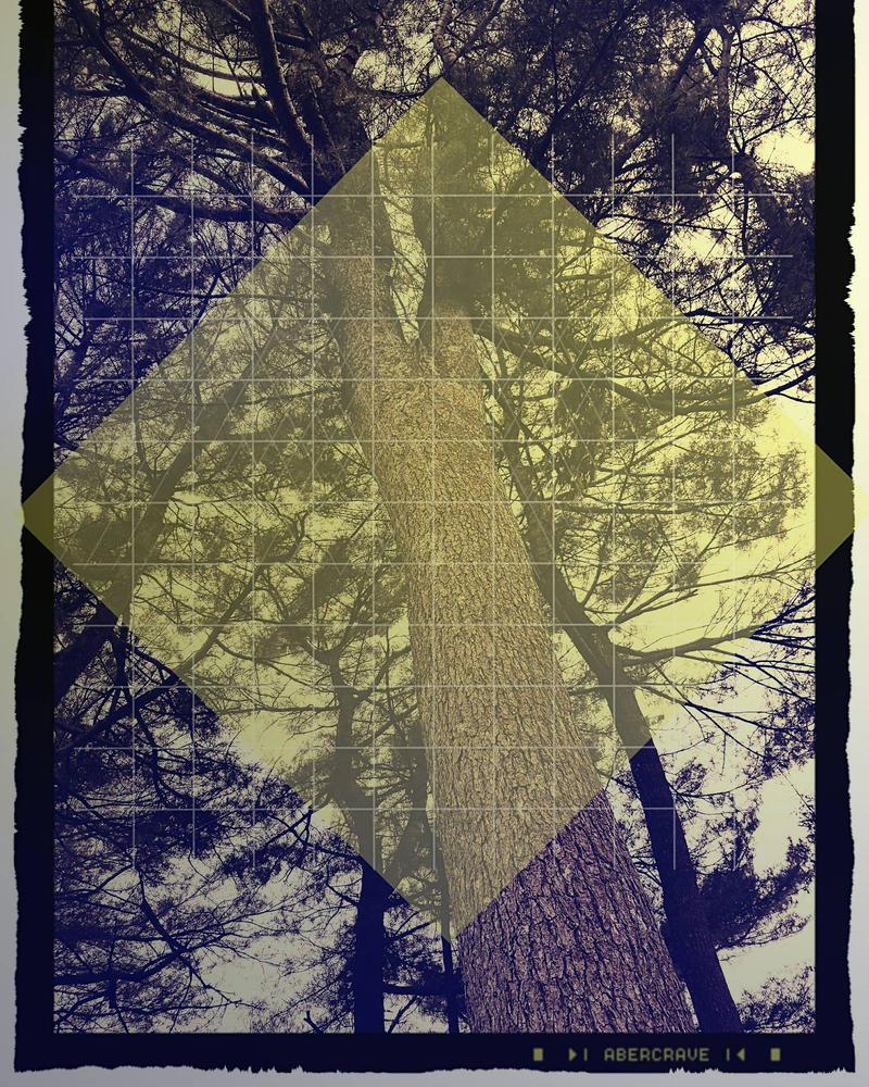Tree Cast by SparkySkyrider