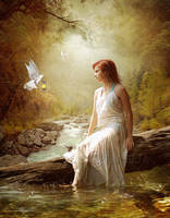 Light from a dove by Euselia