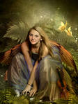 FairyPlace