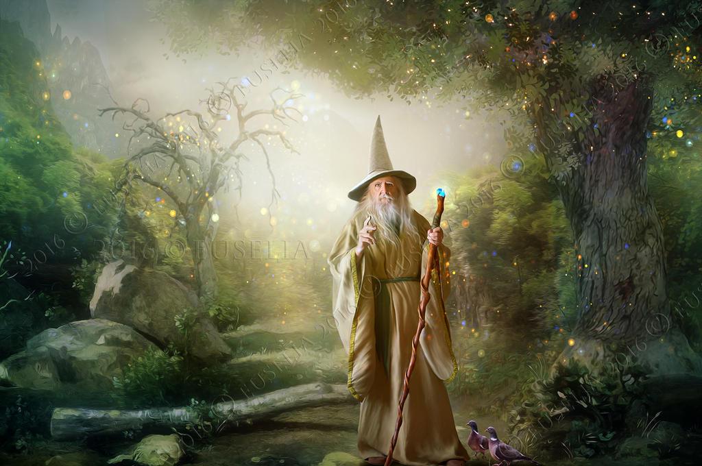 Wizard by Euselia