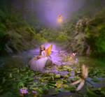 Evening-in-FairyLand2