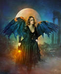 Wings-of-fire2