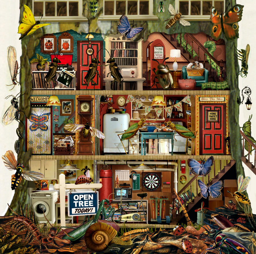 Bug House By JeffDrewPictures On DeviantArt