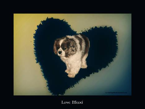 Love Maxi