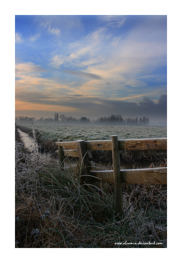 Marshland Fence by Alcamin