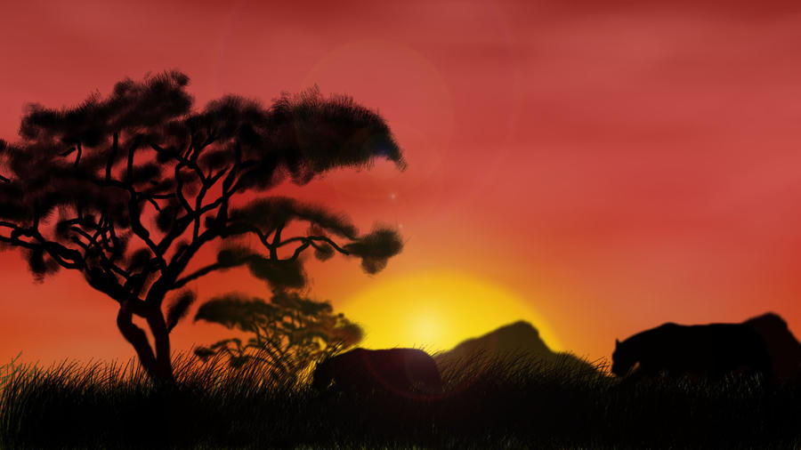 south african sunsets drawing