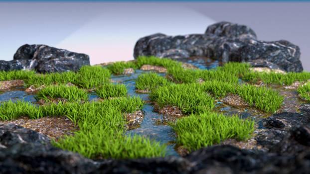 Grassy pools