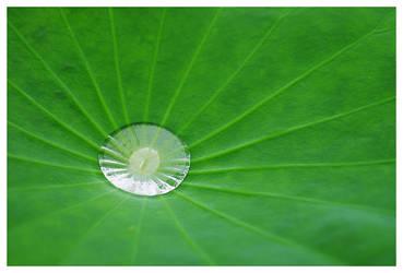 A Drop In Balance by miharashi