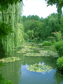 Monet's Garden by totallehmaddeh