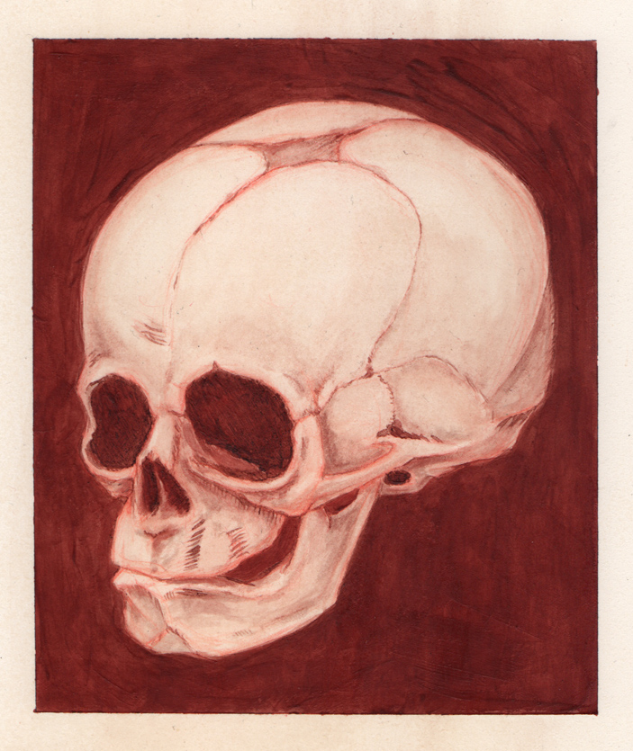 30 Week old Fetal Skull Human Blood Painting by AshleyRussell on ...