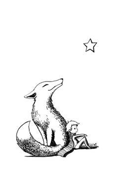 Boy and a fox
