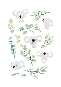 Koala and Eucalyptus