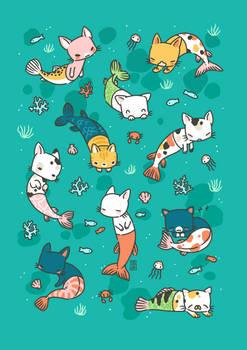 Meowmaids Teal