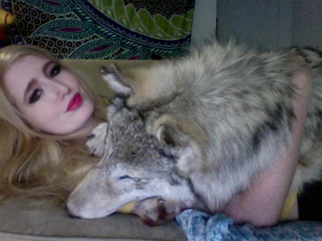 mount wolf chat Meet york singles online & chat in the forums dhu is a 100% free dating site to find personals & casual encounters in york.