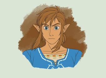 Random Link Portrait by K-reator