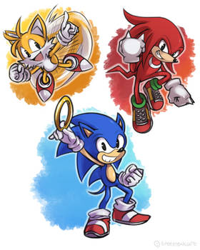 Sonic - S.T.K.