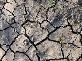 Cracked Dirt Ground by mt-stock