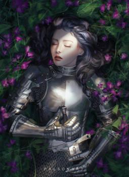Sleeping Knight
